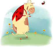 Cow - ladybird Stock Image