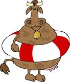 Cow In A Life Preserver. This illustration depicts a cow wearing a life preserver Royalty Free Stock Image