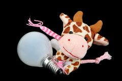 Cow with a light bulb Stock Image