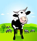 Cow with loose tongue Stock Photography