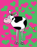 Cow in love. Vector illustration of cow on green and pink background Stock Photos