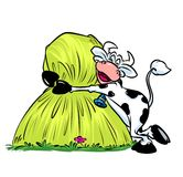 Cow love hay stack cartoon illustration Stock Image