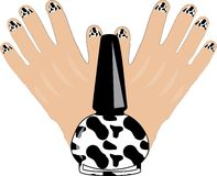 Cow Manicure Royalty Free Stock Photography
