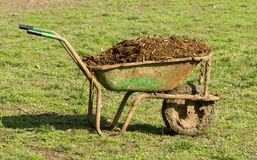 Cow manure in carts Stock Photography