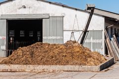 Cow manure that will be used to fertilize. Collected in special containers royalty free stock photos