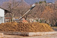 Cow manure that will be used to fertilize. Collected in special containers stock photography