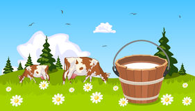 Cow on meadow bucket of milk Stock Photo