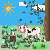 Cow on meadow Stock Image