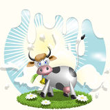 Cow and milk. Illustration, cow on glade with daisywheel on background milk Stock Photos