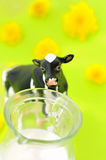 Cow and milk. A cow and a milk jug against a bright green background Stock Images