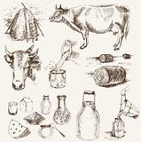 Cow and milk products. Set of vector elements Royalty Free Stock Photography