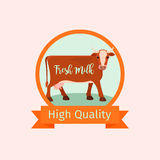Cow orange label design Stock Images