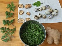 Cow parsley omelet cook, Cooking with ginger, wild plants, Cow parsley and goutweed and quail eggs Stock Images