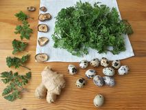 Cow parsley omelet on plate, Cooking with ginger, wild plants, Cow parsley Stock Images