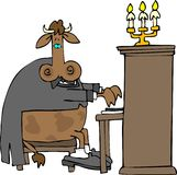 Cow Pianist Stock Photo