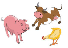 Cow_pullet_pig. Illustrations of farm animals on the white background Royalty Free Stock Photo