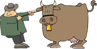 Cow pulling. This illustration depicts a man pulling a cow Stock Image