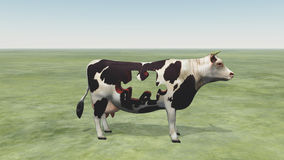 Cow Puzzle. Could represent modern farming and  processing of beef and dairy products Royalty Free Stock Photos