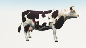 Cow Puzzle Stock Photo