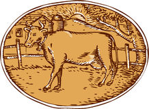 Cow Ranch Farm House Oval Woodcut Stock Image