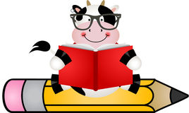 Cow reading book sitting on pencil Royalty Free Stock Images