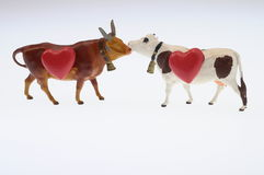 Cow and red heart stock image