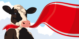 Cow with red ribbon Stock Images