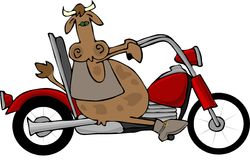 Cow Riding A Motorcycle. This illustration depicts a cow riding a red motorcycle Royalty Free Stock Photography
