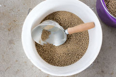 Cow's pellets in bucket Royalty Free Stock Photography