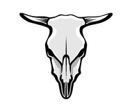 Cows Skull. Vector illustration of cows skull, greyscale, outlined Stock Images