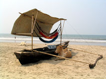 Cow for sale?. Cow and boat on an Goan beach, India Stock Photo
