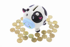 Cow Saving Bank Royalty Free Stock Photos