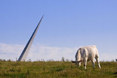 The cow and the sculpture. White cow eating grass in front of a sculpture of a peak stock photos