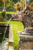 Cow sculpture in Tirta Gangga palace in Karangasem, Bali stock photography