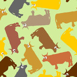 Cow seamless pattern. Crazy cow with big eyes. Pets Vector backg Stock Photography