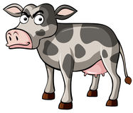 Cow with serious face. Illustration Royalty Free Stock Photo