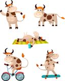 Cow set. Vector Illustration of a cute cow set Stock Photo