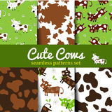 Cow-set-1 Royalty Free Stock Images