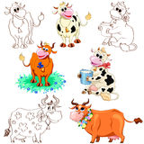 Cow set Royalty Free Stock Images