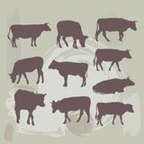 Cow set silhouette on grunge background. vector Royalty Free Stock Photography