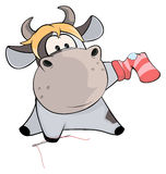 A cow sews a sock. Cartoon. The small cow sews up a sock with a hole Royalty Free Stock Photo