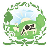 Cow and sheep in a meadow with green grass Royalty Free Stock Image