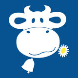 Cow shewing a daisy icon in a blue and white. Stock Photo