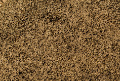 Cow shit texture Royalty Free Stock Photography