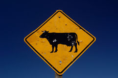 Cow sign with bullet holes  Royalty Free Stock Photo