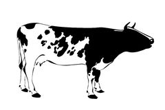 Cow silhouette Royalty Free Stock Photos