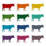 Cow silhouette icons set. Vector icon Stock Image