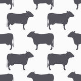 Cow silhouette seamless pattern. Beef meat background Stock Image
