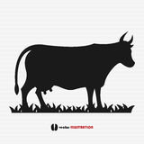 Cow silhouette Royalty Free Stock Images