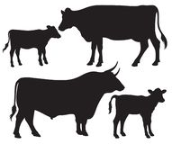Black and white vector silhouettes of cattle